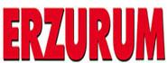 Erzurum Gazetesi