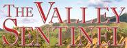 Valley Sentinel