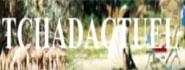 Tchad Actuel